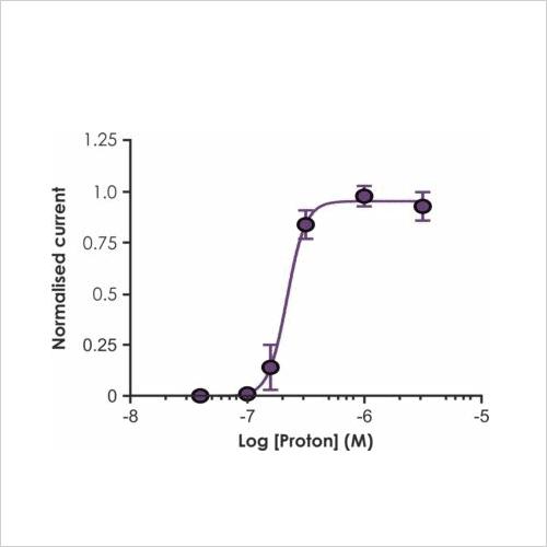 ASIC1a pH50 curve