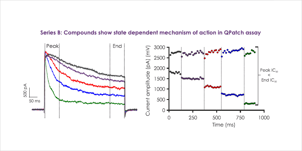 Figure 12b State dependent kv1.x inhibition