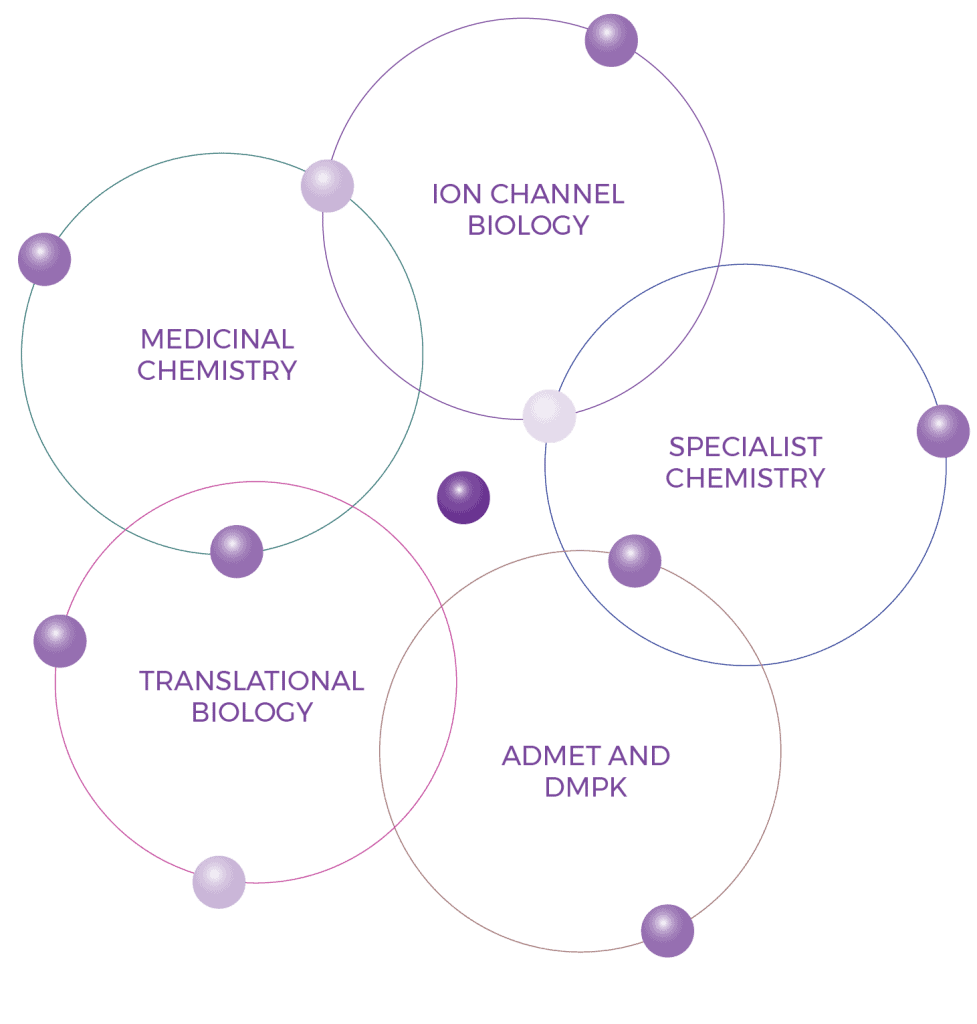 Integrated Drug Discovery Diagram 01 3