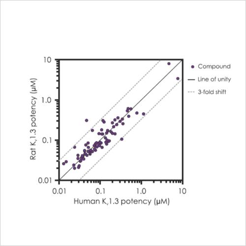 Kv1.3-rat-vs-human-potency