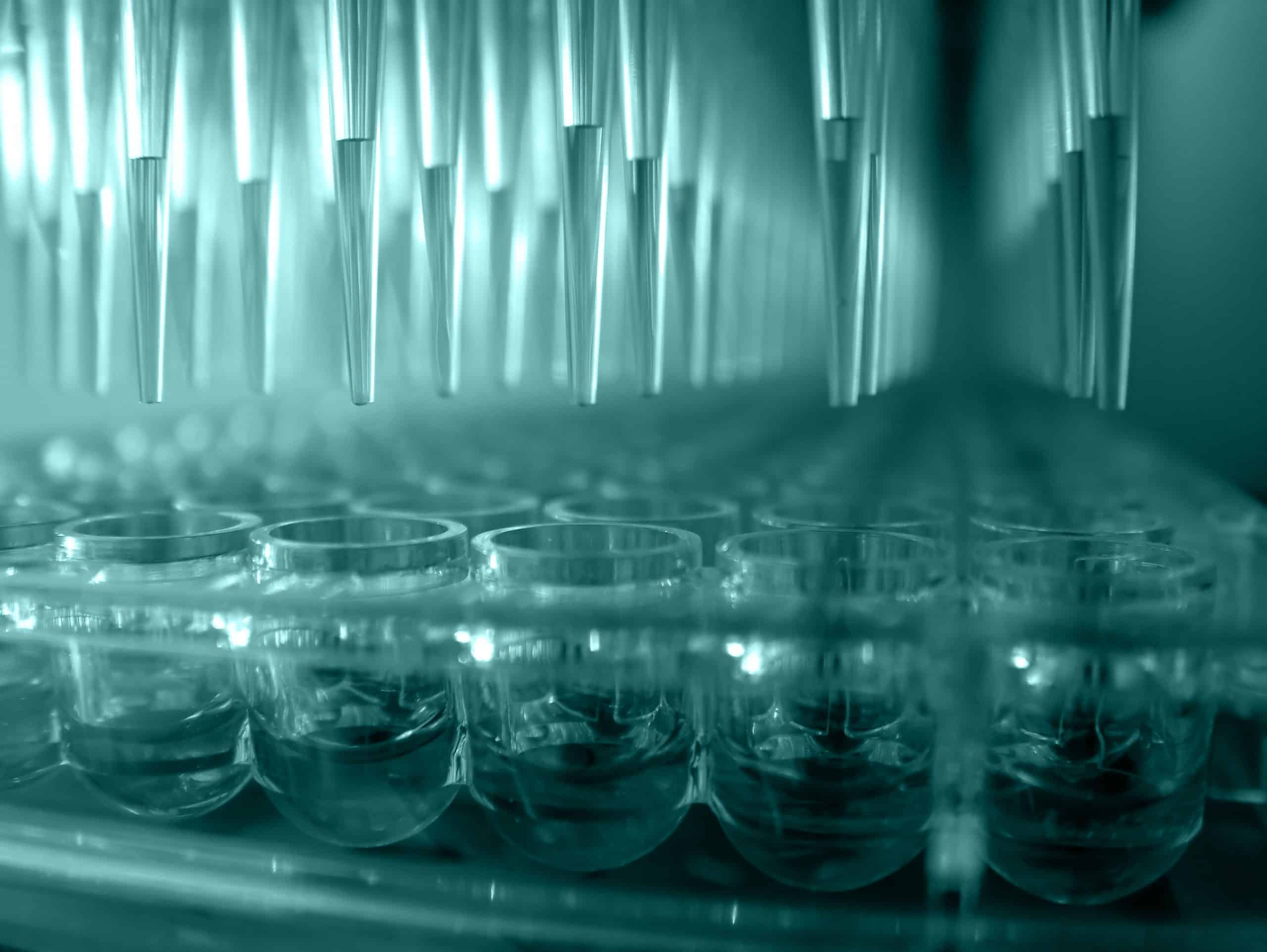 Metrion Biosciences Integrated Drug Discovery Services scaled