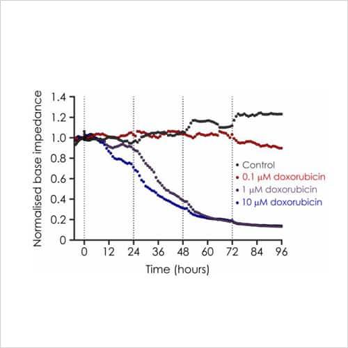 Doxorubicin impedance data