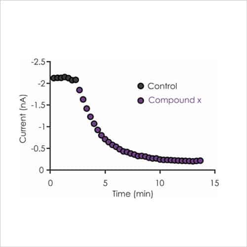 Fig2c DRG sensory neuron ion channel assays