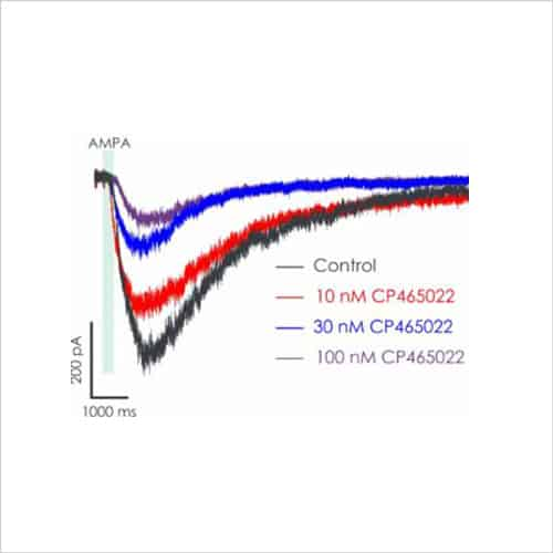 Fig3 Figure 3. Representatrive AMPA CP565022 traces