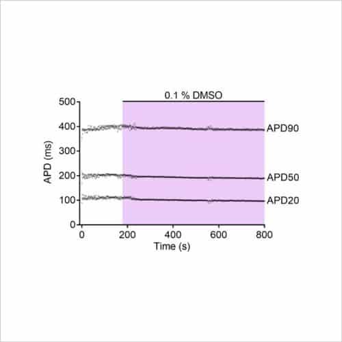 Figure 1b stimulated AP DMSO control