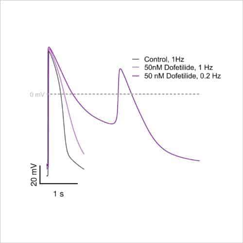Figure 2c Stimulated example figures