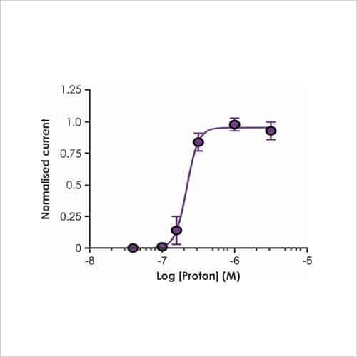 Figure 4b. CNS Ion Channel Targets