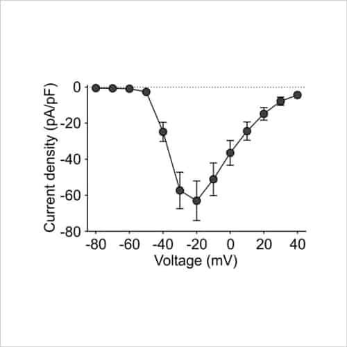 Figure 7 Voltage clamp INav IV