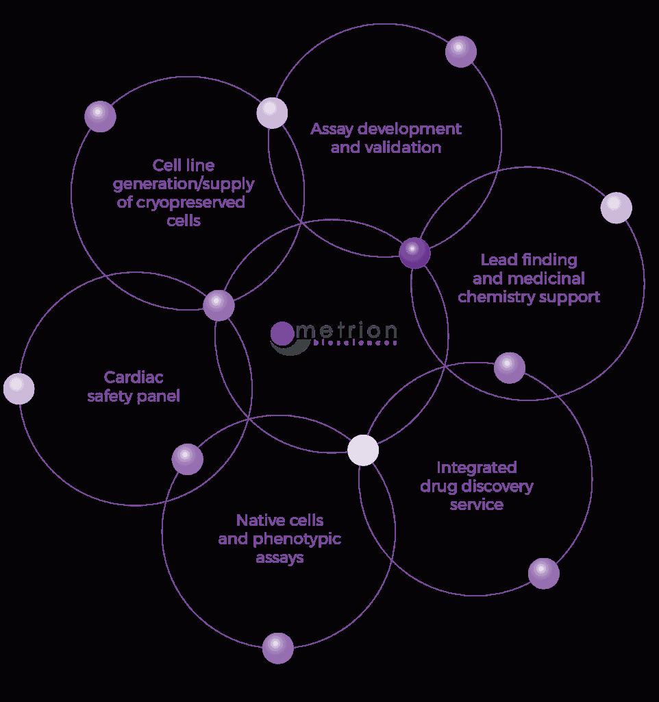 Metrion Biosciences Approach Diagram 01