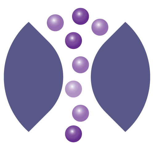 Metrion Biosciences Ion Channel Screening Icon Large 01