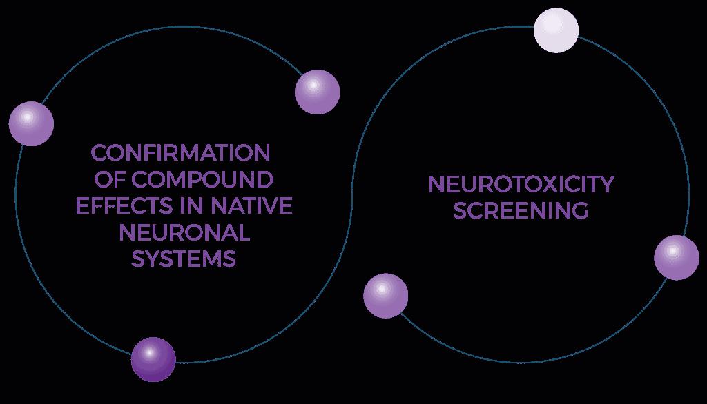 Neuroscience Diagram Lowres 01
