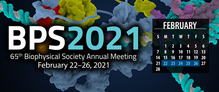Biophysical Society Annual Meeting 2021