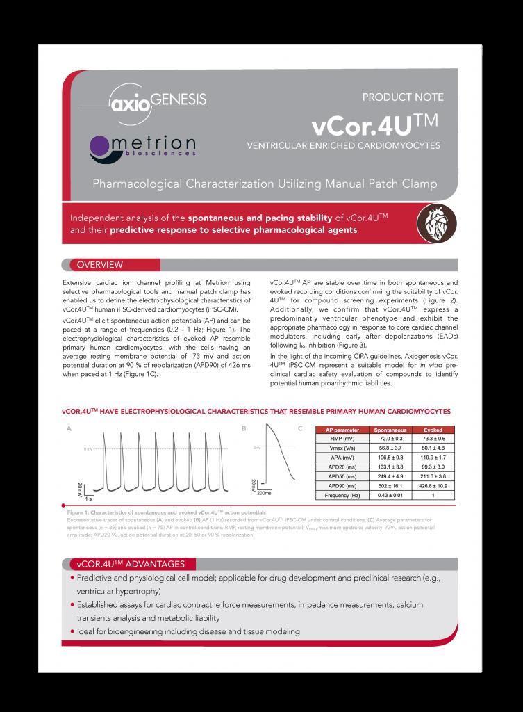 vCor.4U™ Ventricular Enriched Cardiomyocytes