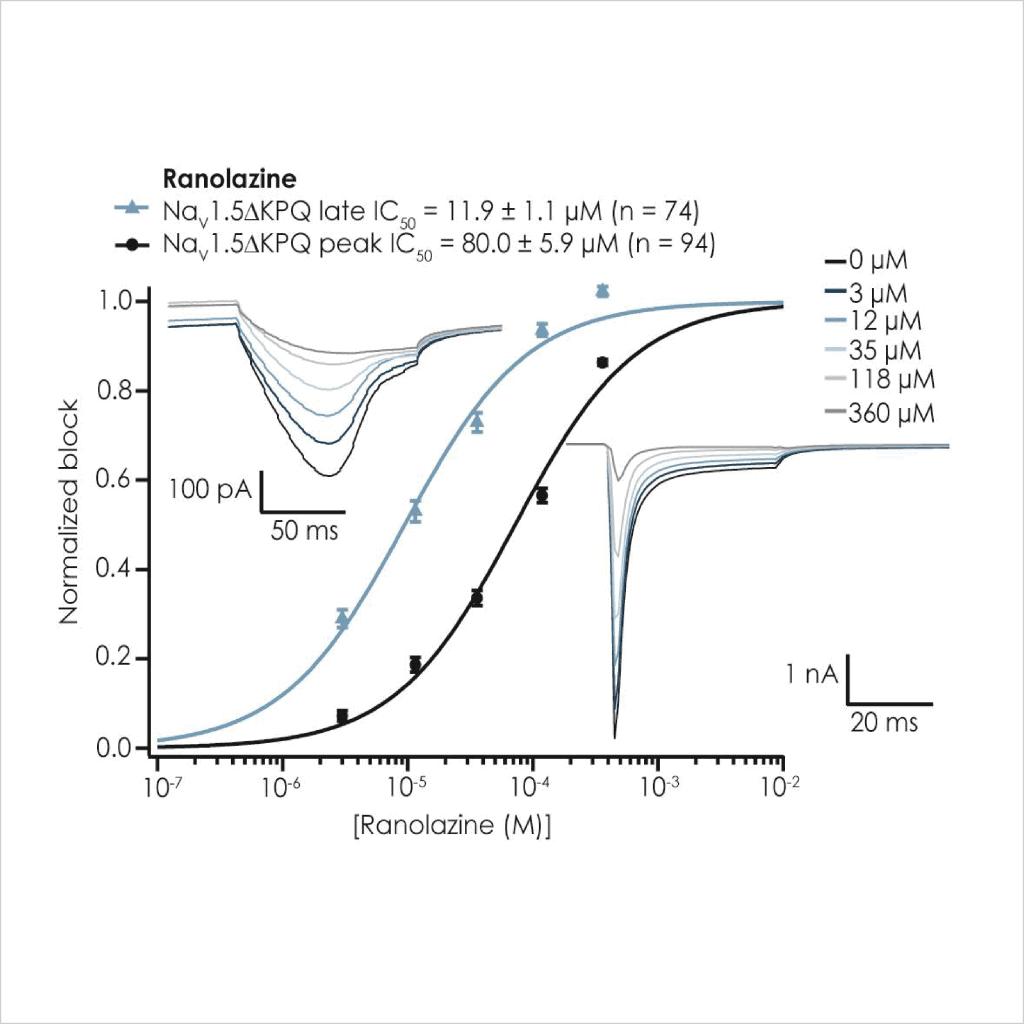 Figure 4 Pharmacological validation of D KPQ Na v 1 5 currents3