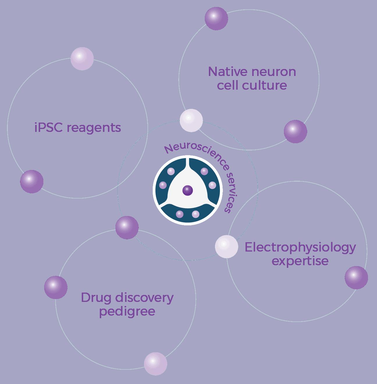 Neuroscience Services Diagram 01
